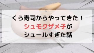 くら寿司のシュモクザメ子の記事のアイキャッチ画像