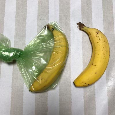 愛菜果の袋の説明②