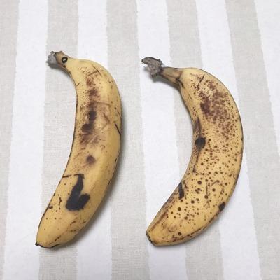 愛菜果の袋の説明③